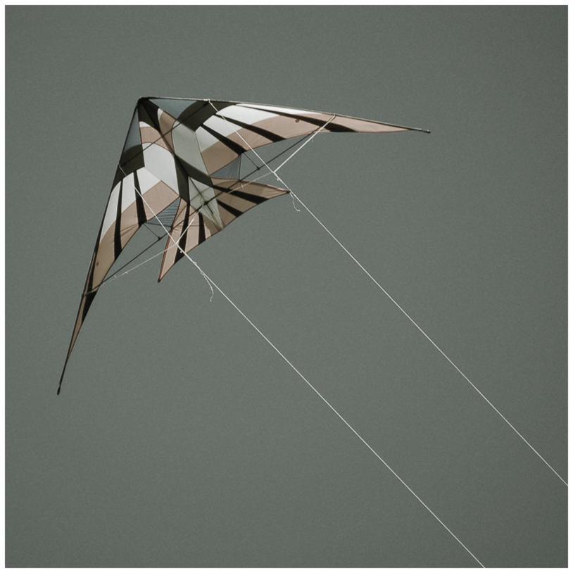 [kites]