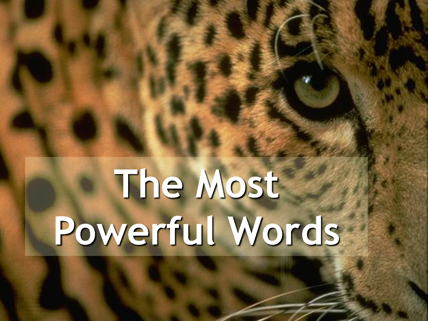 most+powerful+words.png (1500×1125)