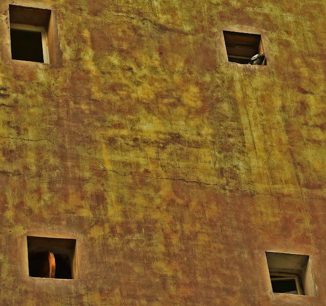 Paloma en pared con cuatro ventanitas.