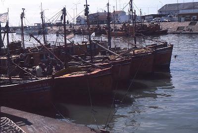 Barcos en puerto de Mar del Plata.