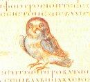 [Owl-Byz-small.jpg]