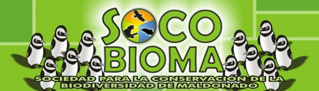 Socobioma