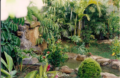 Florbeta: Jardim tropical