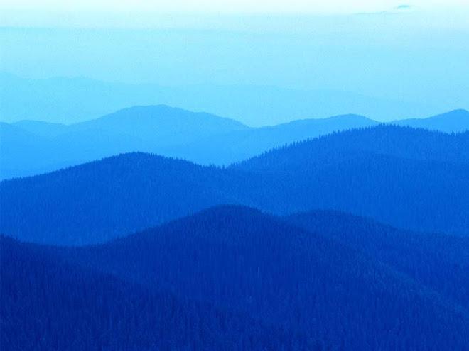 The Blue Ridges of WNC