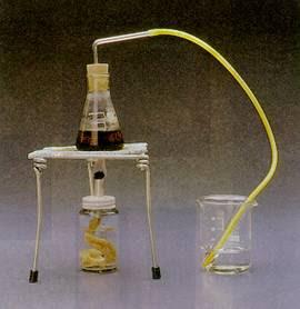 Destilação Simples e Fracionada