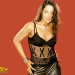 Varanam Ayiram Tamil Movie Heroine Sameera Reddy Wallpapers