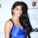Shriya Saran Denies Love With Shreesanth