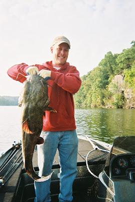 Giant flathead catfish