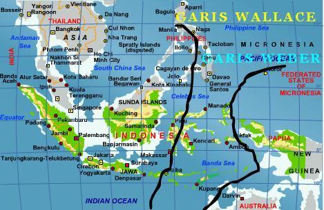 Image Result For Keunikan Flora Indonesiaa