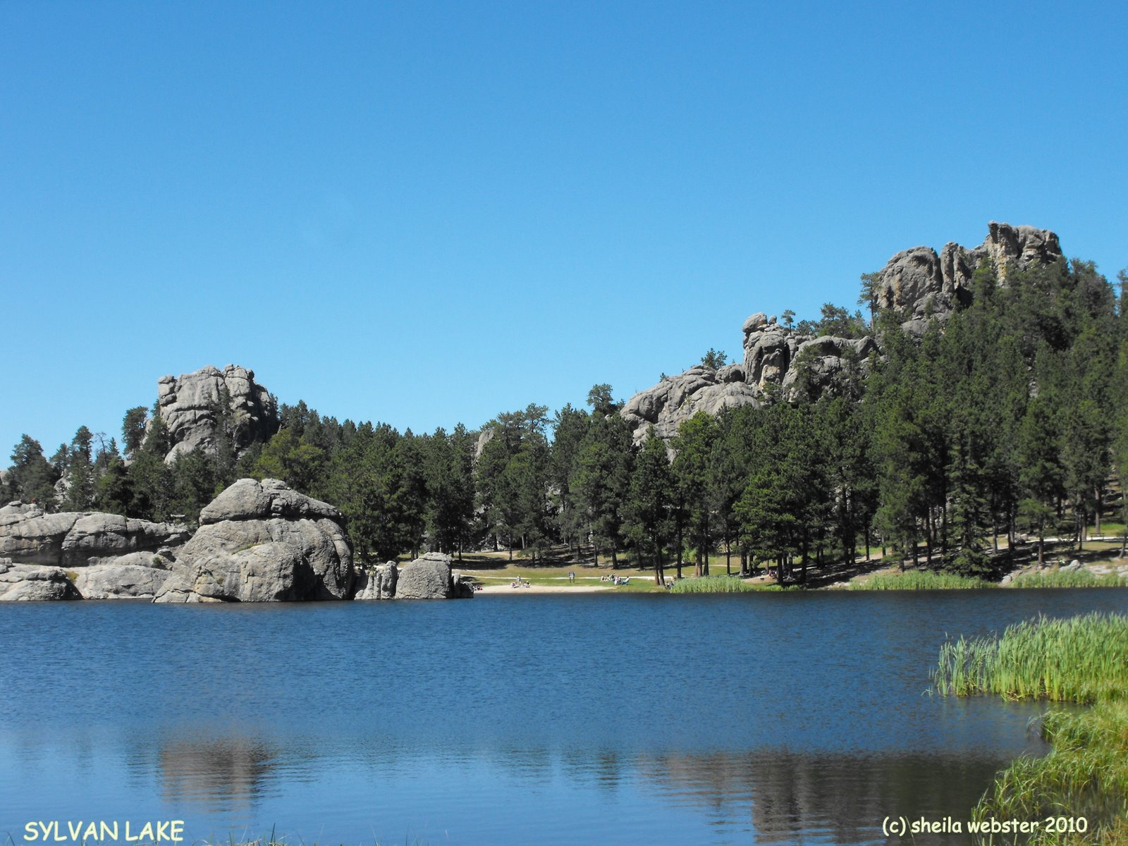 We Love Rv Ing Black Hills Sd Needles Hwy Sylvan