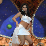 Tamil Movie Dubai Rani Photo Gallery...