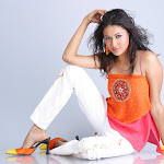 Hot And Sexy South Indian Model & Actress Panchi Exclusive Gallery...