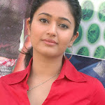 Poonam Bajwa Red Hot Photo Collection...