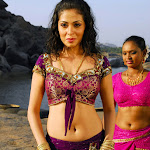Super Hot And Spicy South Indian Babe Sada Alias Sadaf Looking Sexy  In Purple Traditional Dress   Hq Photo Collection...