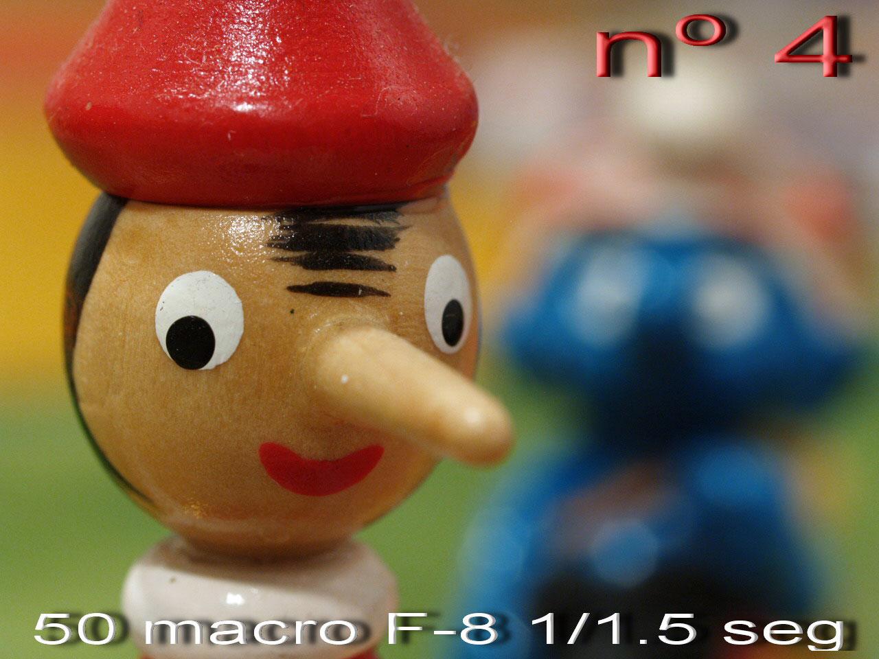 [50-Macro-F-8.jpg]