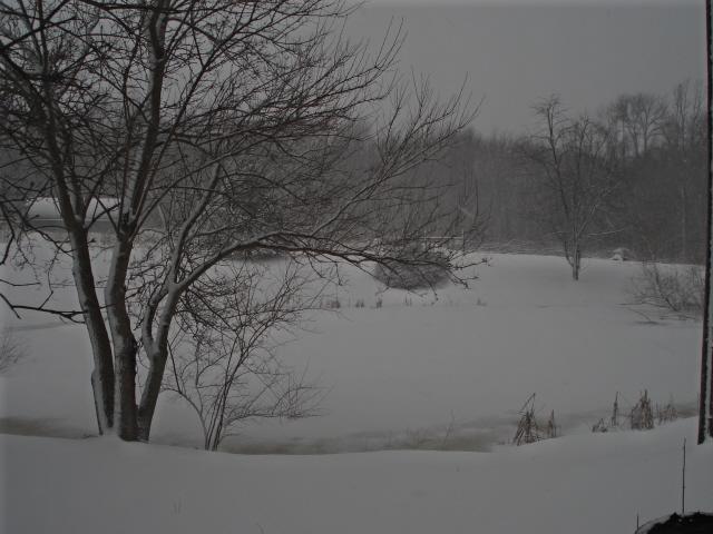 [Snowy+February.jpg]