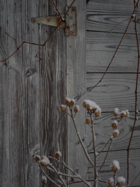 [Barn+Door.jpg]