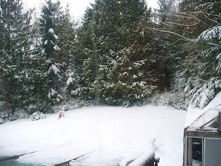 Roberts Creek, B.C., Sunshine Coast, now
