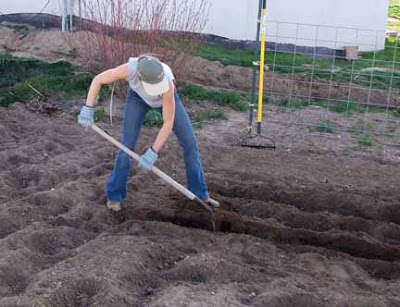 Nightlife digging ditches for Digging ground dream meaning