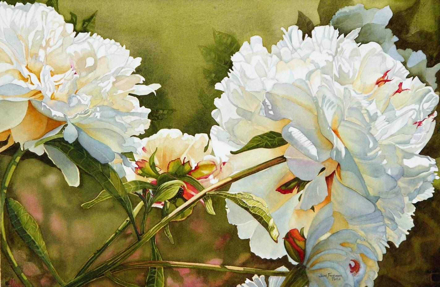 Watercolor Mania: Winter White Peony