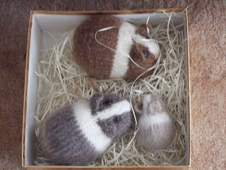 Knitting Patterns For Guinea Pig Clothes : FREE GUINEA PIG KNITTING PATTERNS - VERY SIMPLE FREE ...