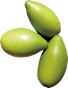 Fruit d'argan