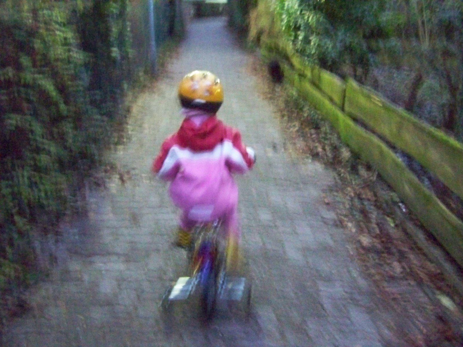 [bike-2.jpg]