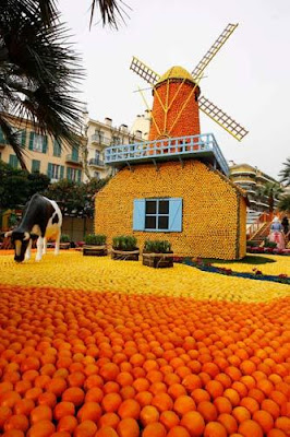 orange sculptures 003 Orange Fruit Creation
