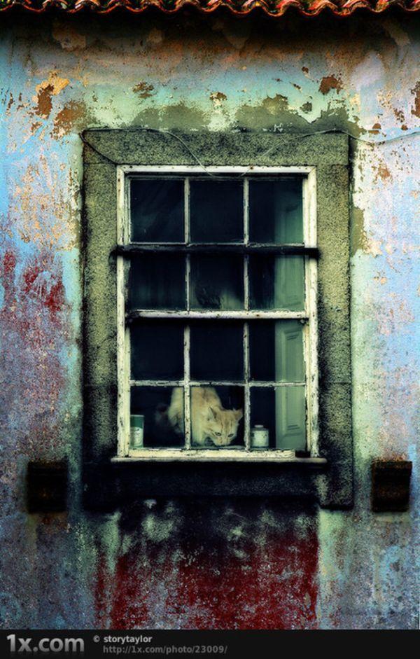 Urban Decay Photography (50 pics)  |Urban Decay Photography