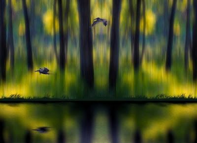 35 espantosas fotos manipuladas por Peter Holme 18