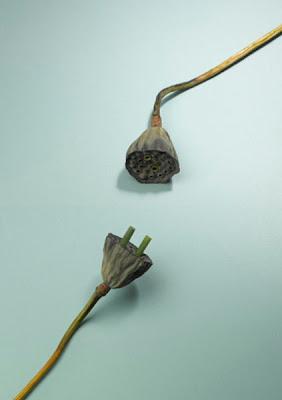Esculturas de comida por Sarah Illenberger 8