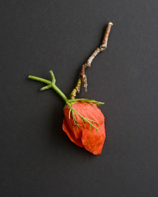 Esculturas de comida por Sarah Illenberger 26