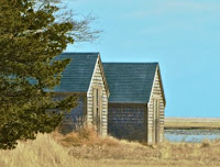 Salt Pond Boathouses by Connie Gregory