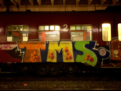 tms tags