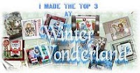 i made the top 3 at winter Wonderland, March 21, 2010