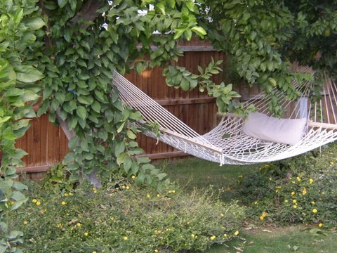 COME AND RELAX IN OUR HAMMOCK, GRANDMA!  LOVE, TOM, SANDY, AND KIDS