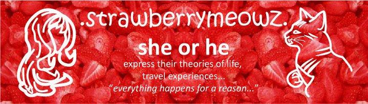 .StrawberrymeowZ.