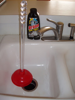 Crisis averted with a bottle of Drano and a handy plunger