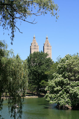 View from Turtle Pond in Central Park