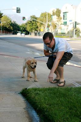 Sprinkler fun for 13 week old puppy Cooper