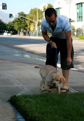 Cooper's second walk