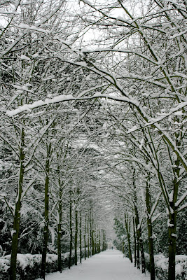 Snowy Chiswick House grounds in London