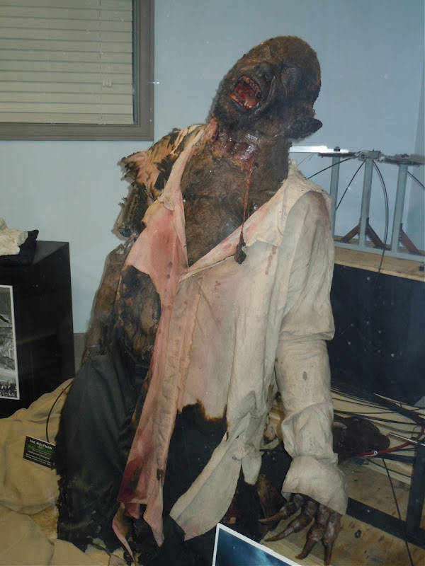 The Wolfman animatronic werewolf