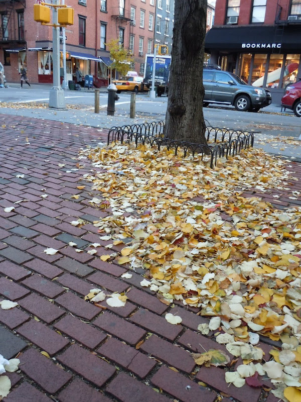 Autumnal West Village NYC