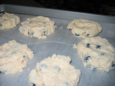 Anneliese's Low Fat Blueberry Scones