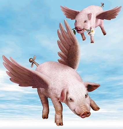 When Pigs did Fly...