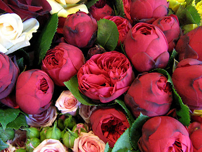 Gorgeous Red Roses