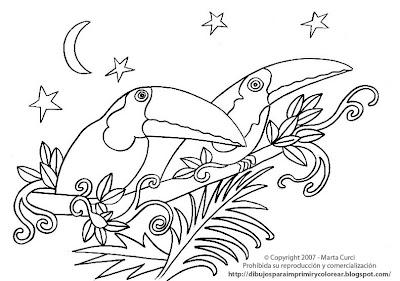 Dibujos Para Imprimir Y Colorear De Animales De La Selva