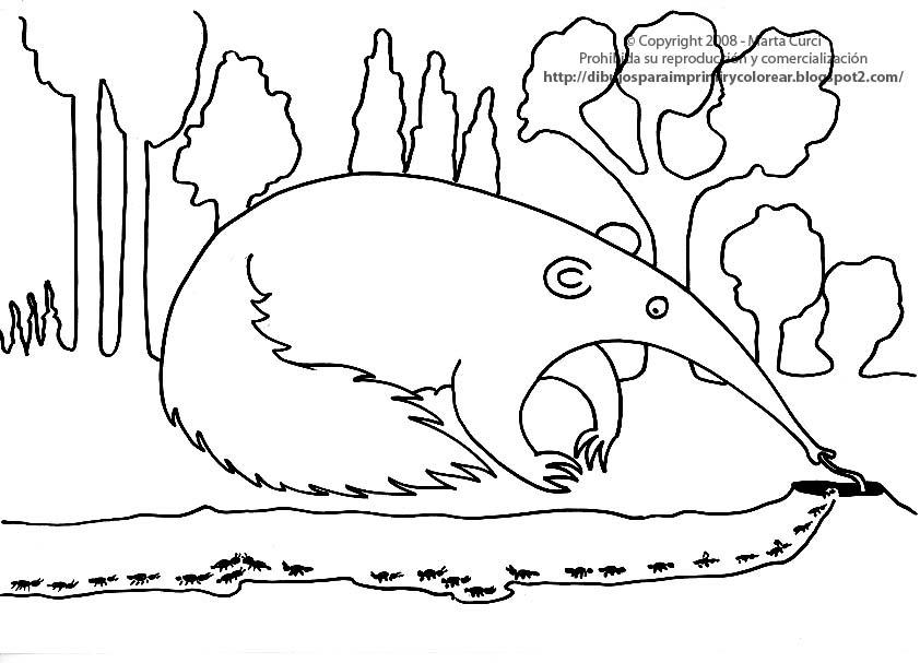 Dibujos para imprimir y colorear gratis para niños: Dibujo de un oso ...