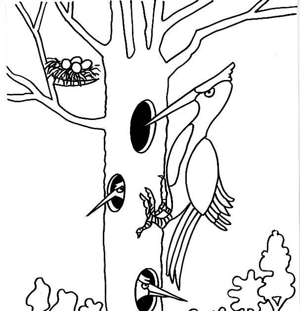 Dibujos para imprimir y colorear gratis para niños: Dibujo para ...